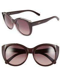 Chloé 'Dalia' 55Mm Cat Eye Sunglasses - Bordeaux - Lyst