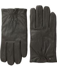 Calvin Klein Elastic Glove W Touch Tip Patches - Lyst