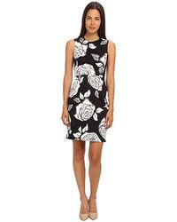 Kate Spade Aires Rose Abbey Dress - Lyst
