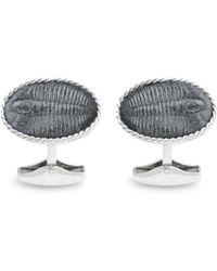 Tateossian Trilobite Cufflinks - Lyst