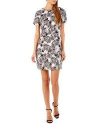 Sugarhill - Lara Zebra Party Tunic Dress - Lyst