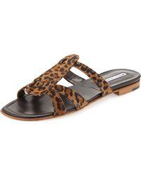 Manolo Blahnik Fregia Leopard-Print Slide Sandal - Lyst