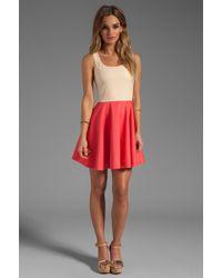 Blaque Label Dress - Lyst