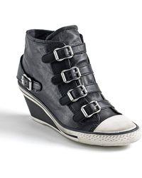 Ash Genial Buckle Wedge Sneakers - Lyst