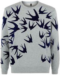McQ by Alexander McQueen Velvet Swallow Sweatshirt gray - Lyst