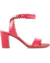 Tabitha Simmons 'Leticia' Sandals - Lyst