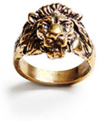 Lulu Frost G. Frost Bravery Lion Ring - Brass gold - Lyst