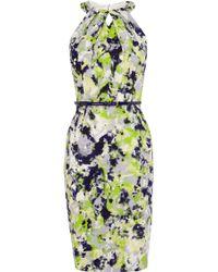 Coast Lola Print Dress green - Lyst