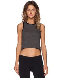 Koral Activewear Muscle Tank - Lyst