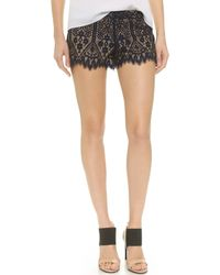David Lerner Lace Shorts - Ink - Lyst