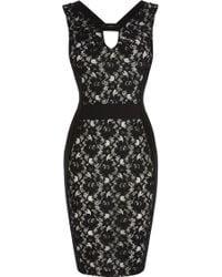 Coast Libby Lace Dress - Lyst