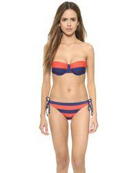 Splendid Marcel Stripe Bikini Bottoms - Red - Lyst