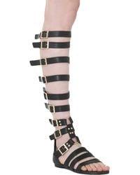 Akira Black Label - Knee High Gladiator Buckle Flat Sandals - Lyst