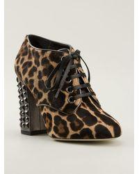 Dolce & Gabbana Animal Print Booties - Lyst