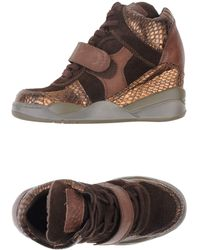 Ash Brown Hightops  Trainers - Lyst