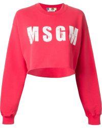 MSGM Logo Print Cropped Sweatshirt - Lyst