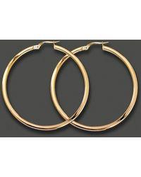 Roberto Coin Medium 18K Yellow Gold Hoop Earrings - Lyst
