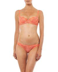 Deborah Marquit - Persian Flowers Lace Bikini Briefs - Lyst