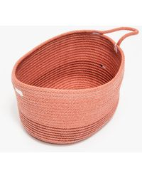 Need Supply Co. 50 Pill Basket - Lyst
