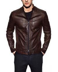 Jardine Oxblood Cafe Leather Jacket - Lyst