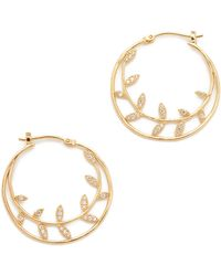 Tai - Leaf Hoop Earrings - Lyst