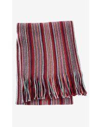Express Stripe Cotton Scarf - Lyst