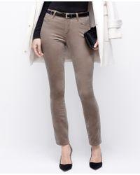 Ann Taylor Curvy Skinny Velvet Pants - Lyst