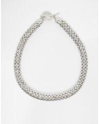 Coast - Snake Choker Necklace - Lyst