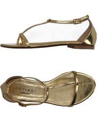Orciani - Thong Sandal - Lyst