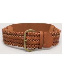 Bebe Braided Buckle Stretch Belt - Lyst