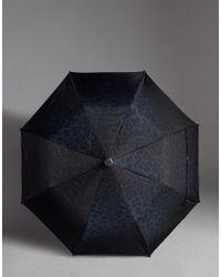 Dolce & Gabbana - Dauphine Calfskin Leopard Print Nylon Automatic Umbrella - Lyst