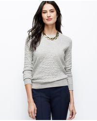 Ann Taylor Animal Jacquard Sweatshirt - Lyst