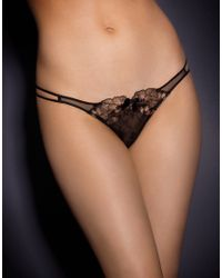 Agent Provocateur | Laleh Thong Black And Bronze | Lyst