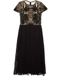 Erdem Shirley Guipure-Lace Midi Dress black - Lyst