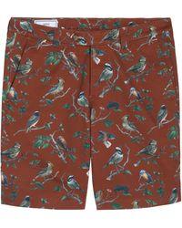Ami Alexandre Mattiussi Brown Bird Shorts - Lyst