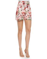 Carolina Herrera - High-waisted Floral-print Shorts - Lyst