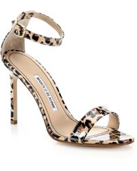Manolo Blahnik Chaos Leopard-Print Patent Leather Ankle-Strap Sandals animal - Lyst