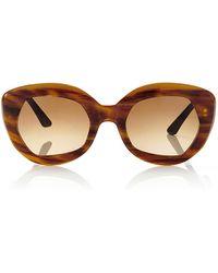 Marni Havana Honey Acetate Sunglasses - Lyst