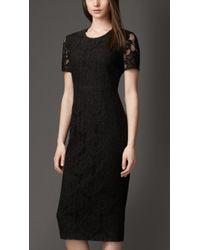 Burberry Cotton Blend Lace Dress - Lyst