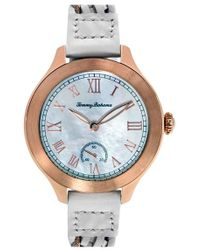 Tommy Bahama - 'waikiki Dream' Woven Leather Strap Watch - Lyst
