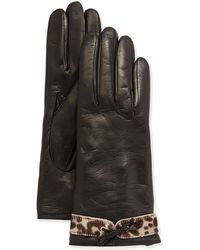 Portolano Leather Calf Hair Glove animal - Lyst