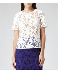 Reiss Orinoco Sheer Lace Top - Lyst