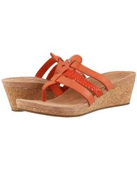 33cefa5a27 UGG - Maddie (fire Opal) Shoes - Lyst