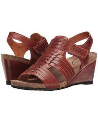 Taos Footwear Tradition (cognac) Shoes