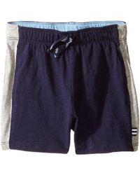 Splendid - Always Active Shorts (infant) - Lyst