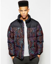 Lazy Oaf - Padded Jacket With Lizard Print - Lyst
