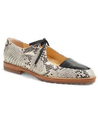 Eugenia Kim - Lilly Python-Effect Oxford Shoes - Lyst