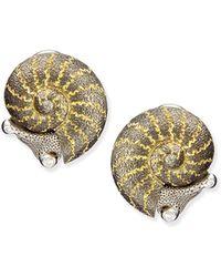 Alex Soldier - 18k Diamond Snail Stud Earrings - Lyst
