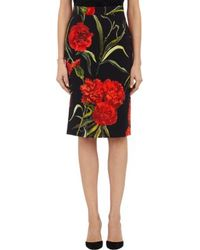 Dolce & Gabbana Carnation-print Pencil Skirt - Lyst