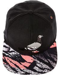 Staple The Lava Pigeon Snapback Hat - Lyst